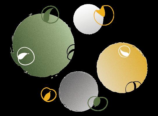 illustration packaging design - Fixy Creative